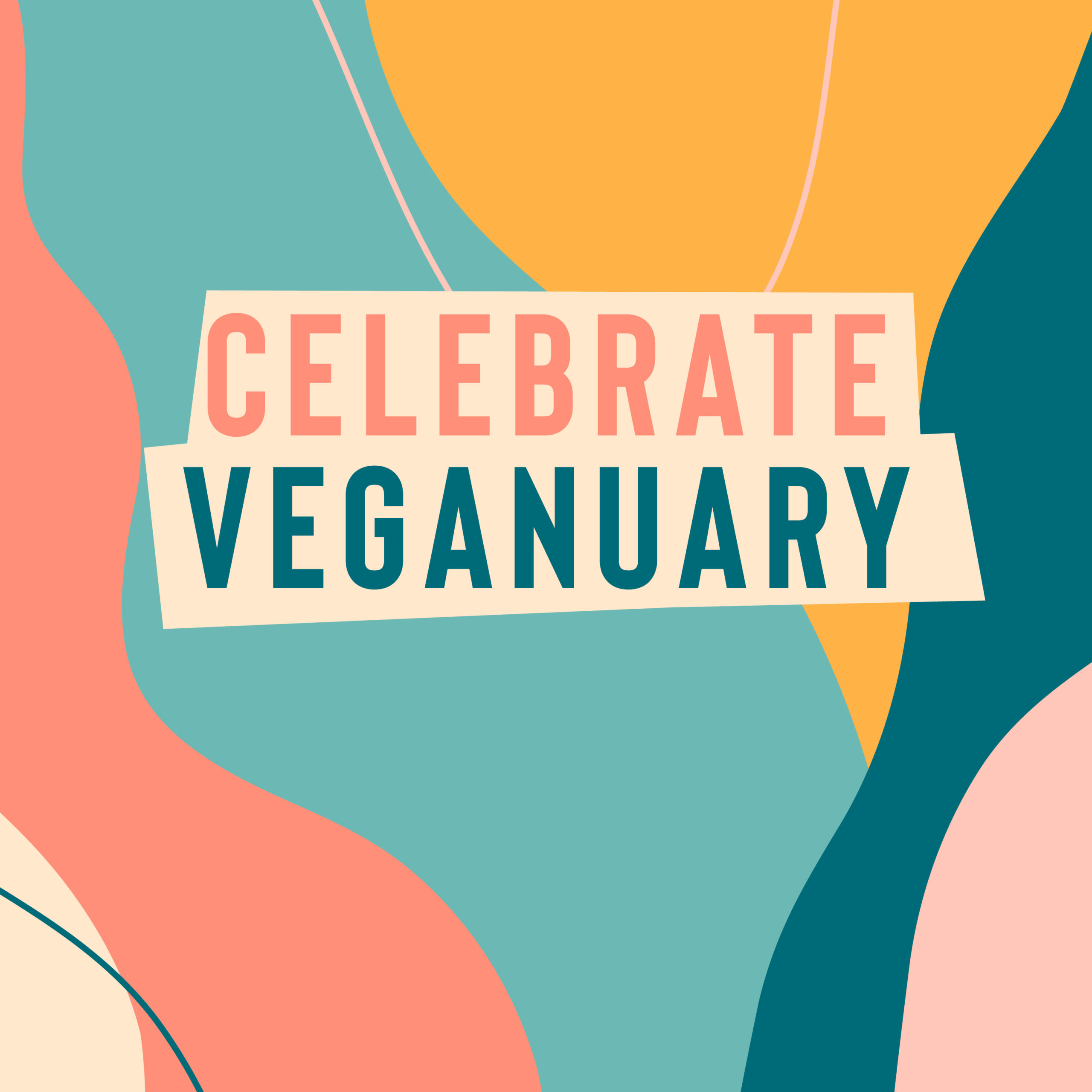 Celebrate Veganuary with 15% off selected vegan friendly products