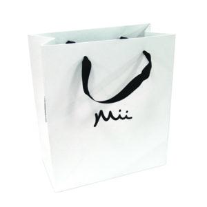Mii Gift Bag